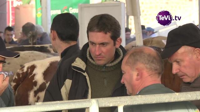 Festival de viande 2018 chambre d 39 agriculture - Chambre d agriculture de la manche ...
